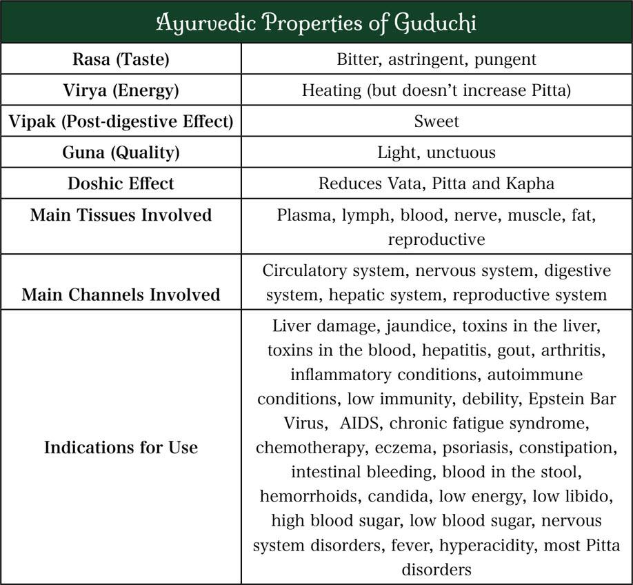 Medicinal properties of Giloy Vati